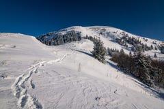 Ηλιόλουστο χειμερινό πρωί σε μια κορυφογραμμή βουνών Στοκ εικόνα με δικαίωμα ελεύθερης χρήσης