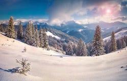 Ηλιόλουστο χειμερινό πρωί στα χιονώδη βουνά Στοκ Εικόνες