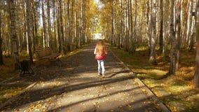 Η κάμερα ακολουθεί το κορίτσι που περπατά κατά μήκος της αλέας φθινοπώρου στο πάρκο Κίτρινη πτώση φύλλων φιλμ μικρού μήκους
