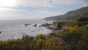 Η κάμερα γλιστρά ευθεία μια άποψη πέρα από τους καταπληκτικούς βράχους παραλιών και ανθίζει στην όμορφη μεγάλη ωκεάνια ακτή Καλιφ απόθεμα βίντεο