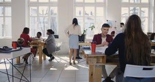 Η κάμερα κινείται δεξιά κατά μήκος του σύγχρονου ελαφριού γραφείου σοφιτών, multiethnic επιχειρηματίες που εργάζονται στην υγιή α απόθεμα βίντεο