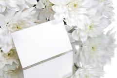 η κάρτα ανθίζει το λευκό δ Στοκ φωτογραφία με δικαίωμα ελεύθερης χρήσης