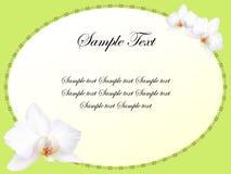 η κάρτα ανθίζει orchid το λευκό ελεύθερη απεικόνιση δικαιώματος