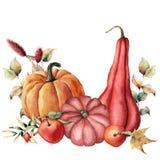 Η κάρτα Watercolor με το χέρι συγκομιδών φθινοπώρου χρωμάτισε τις κολοκύθες, μήλα, dogroses με τα φύλλα και τους κλάδους που απομ διανυσματική απεικόνιση