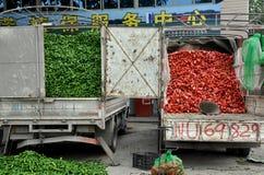 η Κίνα γέμισε τα truck πιπεριών pengzhou Στοκ Εικόνες