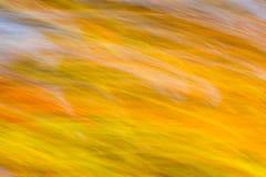 Η κίνηση θόλωσε το πολύχρωμο υπόβαθρο φύσης Στοκ φωτογραφία με δικαίωμα ελεύθερης χρήσης