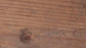 Η κίνηση στάσεων ζωντάνεψε το ξύλινο υπόβαθρο σύστασης χρήσιμο για τα παλαιά αποτελέσματα ταινιών χρησιμοποιώντας το εργαλείο αδι φιλμ μικρού μήκους