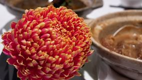 Η κίνηση του καυτού τσαγιού και το λουλούδι στην κίνηση πινάκων και θαμπάδων των ανθρώπων απολαμβάνουν το γεύμα απόθεμα βίντεο