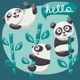 Η καθορισμένα χαριτωμένα Panda και μπαμπού με γειά σου Στοκ εικόνα με δικαίωμα ελεύθερης χρήσης