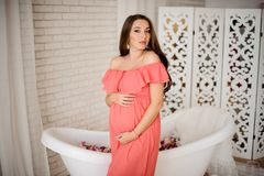 Η καλή έγκυος γυναίκα brunette έντυσε στο φόρεμα Στοκ εικόνες με δικαίωμα ελεύθερης χρήσης