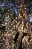 η Καμπότζη καταστροφές Στοκ Εικόνα
