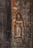 η Καμπότζη συγκεντρώνει siem Πέτρινη χάραξη Apsara στο ναό TA Prohm Στοκ φωτογραφία με δικαίωμα ελεύθερης χρήσης