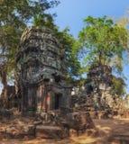 η Καμπότζη συγκεντρώνει siem TA Prohm, αρχαίοι ναοί στη ζούγκλα Στοκ φωτογραφία με δικαίωμα ελεύθερης χρήσης