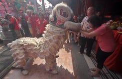 Η ΚΑΠ πηγαίνει Meh σε Klenteng Tien Kho Sie Pasar gede Στοκ φωτογραφία με δικαίωμα ελεύθερης χρήσης
