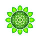 Η καρδιά Chakra Mandala διανυσματική απεικόνιση