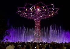 Η κατάπληξη παρουσιάζει του δέντρου της ζωής τη νύχτα σε EXPO το 2015 στο Μιλάνο Στοκ Εικόνες