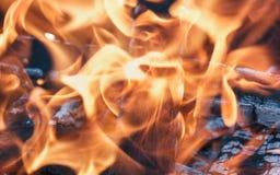 Η καυτή πορτοκαλιά φλόγα πυρκαγιάς από το ξύλο με το κάψιμο των κλαδίσκων και συνδέεται το φ Στοκ φωτογραφίες με δικαίωμα ελεύθερης χρήσης