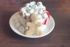 Η καυτή σοκολάτα με marshmallow και καλάμων και μελοψωμάτων καραμελών το μπισκότο conceppt, το διάστημα αντιγράφων, καλή χρονιά κ στοκ εικόνα με δικαίωμα ελεύθερης χρήσης