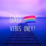 Η καλή εμπνευσμένη ζωή Vibes μόνο παρακινεί την έννοια Στοκ Εικόνα