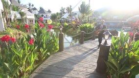 η κιθάρα παιχνιδιών ατόμων πηγαίνει κατά μήκος της γέφυρας μεταξύ των λουλουδιών απόθεμα βίντεο