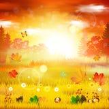 η κινηματογράφηση σε πρώτο πλάνο ανασκόπησης φθινοπώρου χρωματίζει το φύλλο κισσών πορτοκαλί Διανυσματική κάρτα πτώσης ελεύθερη απεικόνιση δικαιώματος