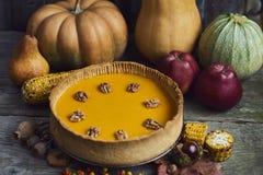 η κινηματογράφηση σε πρώτο πλάνο ανασκόπησης φθινοπώρου χρωματίζει το φύλλο κισσών πορτοκαλί Σπιτική πίτα κολοκύθας για την ημέρα Στοκ Εικόνες