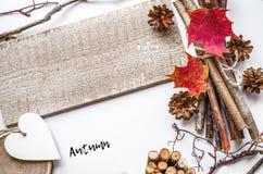 η κινηματογράφηση σε πρώτο πλάνο ανασκόπησης φθινοπώρου χρωματίζει το φύλλο κισσών πορτοκαλί Μια ευγενής σύνθεση φθινοπώρου Στοκ Εικόνες