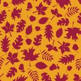 η κινηματογράφηση σε πρώτο πλάνο ανασκόπησης φθινοπώρου χρωματίζει το φύλλο κισσών πορτοκαλί Η πτώση αφήνει το άνευ ραφής διανυσμ διανυσματική απεικόνιση