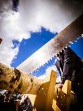 Η κινηματογράφηση σε πρώτο πλάνο ενός κούτσουρου δέντρων σημύδων που πριονίζεται από κάποιο έντυσε σε ένα κοστούμι και ντύνει το  Στοκ φωτογραφία με δικαίωμα ελεύθερης χρήσης