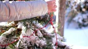Η κινηματογράφηση σε πρώτο πλάνο, μια γυναίκα διακοσμεί το χριστουγεννιάτικο δέντρο υπαίθρια με τις διακοσμήσεις Χριστουγέννων Πα απόθεμα βίντεο