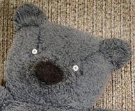 Η κινηματογράφηση σε πρώτο πλάνο παλαιού teddy αντέχει το πρόσωπο Στοκ φωτογραφίες με δικαίωμα ελεύθερης χρήσης