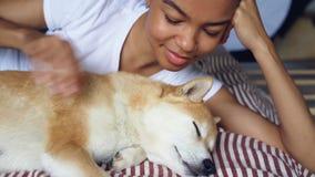 Η κινηματογράφηση σε πρώτο πλάνο που πυροβολείται το γρατσούνισμα της αγάπης του ιδιοκτήτη σκυλιών που χαϊδεύει το καλό κατοικίδι απόθεμα βίντεο