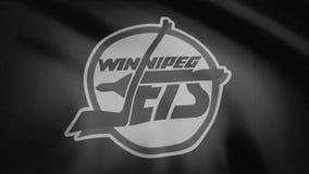 Η κινηματογράφηση σε πρώτο πλάνο της κυματίζοντας σημαίας με Winnipeg αναβλύζει λογότυπο ομάδων χόκεϊ NHL, μονοχρωματικός, θόρυβο ελεύθερη απεικόνιση δικαιώματος