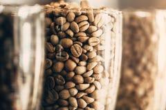 Η κινηματογράφηση σε πρώτο πλάνο το φασόλι καφέ arabica φασόλι καφέ Στοκ φωτογραφία με δικαίωμα ελεύθερης χρήσης