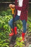 Η κινηματογράφηση σε πρώτο πλάνο τόνισε τη φωτογραφία της νέας γυναίκας στις κόκκινες λαστιχένιες μπότες που σκάβουν το χώμα στον Στοκ Φωτογραφία