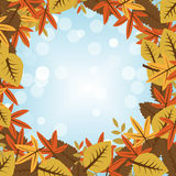 η κινηματογράφηση σε πρώτο πλάνο ανασκόπησης φθινοπώρου χρωματίζει το φύλλο κισσών πορτοκαλί διανυσματική απεικόνιση