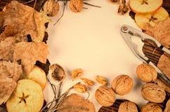 η κινηματογράφηση σε πρώτο πλάνο ανασκόπησης φθινοπώρου χρωματίζει το φύλλο κισσών πορτοκαλί Στοκ Φωτογραφία