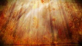η κινηματογράφηση σε πρώτο πλάνο ανασκόπησης φθινοπώρου χρωματίζει το φύλλο κισσών πορτοκαλί