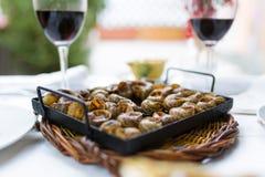 Η κινηματογράφηση σε πρώτο πλάνο του α μπορεί των σαλιγκαριών Χαρακτηριστικά καταλανικά τρόφιμα Στοκ Εικόνα