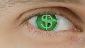 Η κινηματογράφηση σε πρώτο πλάνο του ματιού με το κείμενο υπολογιστών Ζουμ στο centr Αμερικανικό δολάριο, Δολ ΗΠΑ διανυσματική απεικόνιση