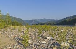 Η κοιλάδα ποταμών Oka Sayanskaya Σιβηρία, Ρωσία στοκ φωτογραφίες με δικαίωμα ελεύθερης χρήσης