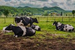 Η κοιλάδα mugello από τη Φλωρεντία Ιταλία Στοκ Φωτογραφίες