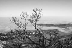 Η κοιλάδα και η πόλη στην υδρονέφωση Στοκ Εικόνες