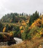 Η κοιλάδα ποταμών Elwa χαμηλώνει το φράγμα Στοκ Φωτογραφίες