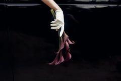 Η κομψή πανέμορφη νύφη παραδίδει το γάμο εκμετάλλευσης γαντιών μεταξιού bouque στοκ εικόνα με δικαίωμα ελεύθερης χρήσης