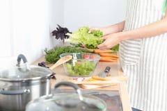 η κοπή αγγουριών μαγειρέματος τρώει το θηλυκό πορτρέτο ζωής βασικών κουζινών κοριτσιών προετοιμάζοντας το αρκετά χαμόγελο κάτι πο Στοκ εικόνες με δικαίωμα ελεύθερης χρήσης