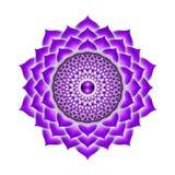 Η κορώνα Chakra Στοκ εικόνα με δικαίωμα ελεύθερης χρήσης