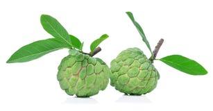 η κρέμα ανασκόπησης μήλων απομόνωσε το λευκό Στοκ Εικόνες