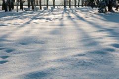 η κρούστα 2 υπογραμμίζει την παγωμένη σύσταση επιφάνειας φωτός του ήλιου χιονιού προτύπων λιμνών φυσική λεπτά Στοκ Φωτογραφία