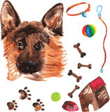 Η κτηνιατρική εξάρτηση που περιλαμβάνουν το γερμανικό ποιμένα και τα εξαρτήματα για Στοκ εικόνες με δικαίωμα ελεύθερης χρήσης